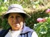 arequipa-colca-canyon-picks-53