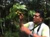 Cuyabeno-picks-11