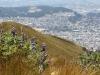 Quito-18